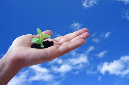 conceptual idea - nature protection, environment care photo