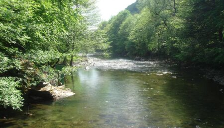 mountain stream in a day of spring Stock Photo - 4302708