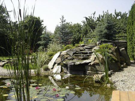 waterfall in a beautiful garden