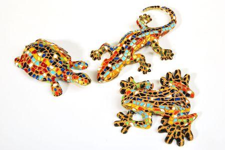 lizzard: lizzard, turtle, frog