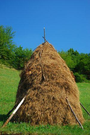 weald: haycock
