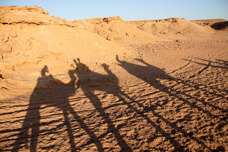 marsa: shadow