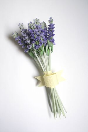 Bunch of lavender on white background Stock Photo - 490484