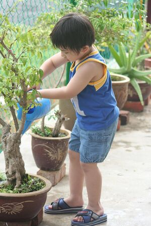 wateringcan: Boy holding watering-can watering the plant