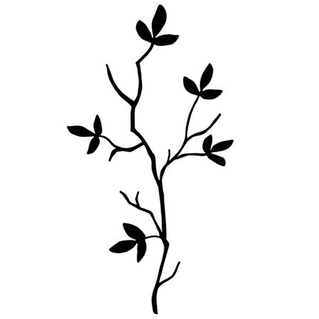 wall decal: high quality original Silhouette of a tree branch isolated on white background