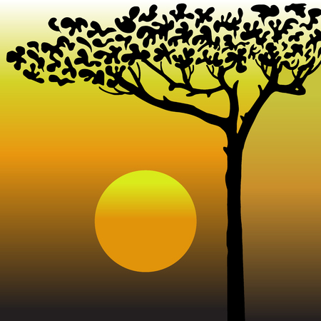 kalahari desert: High quality original trendy vector tree in the desert,sunset in desert