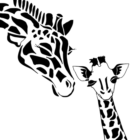 Cute giraffe family coloring, solated on white background Illustration