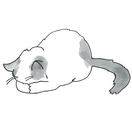 kitty: High quality drawn in original style illustration of cute kitty Illustration