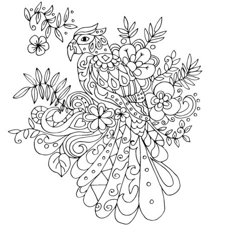 parot: parot for coloring with many elements isolated on white background