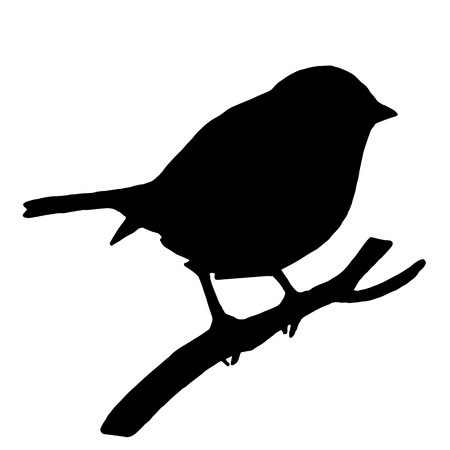 High quality original Silhouette bird on ash branch Çizim