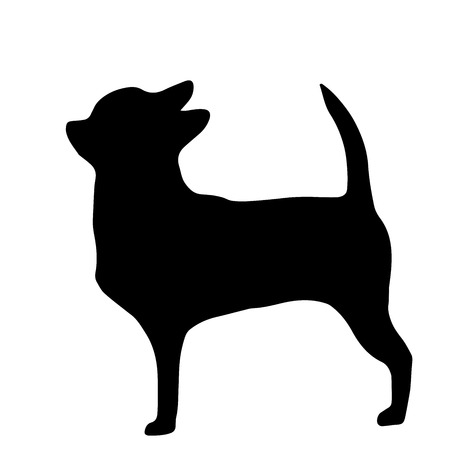 High quality silhouette of chihuahua isolated on white background