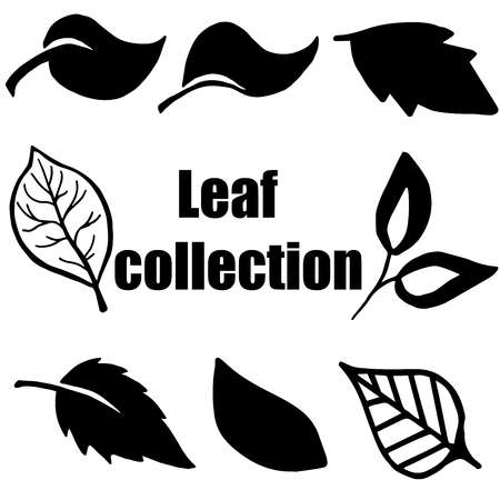 gum tree: High quality original leaf collection isolated on white background Illustration