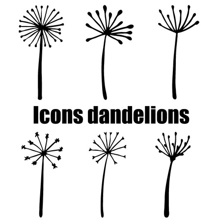 overblown: High quality original set of dandelions isolated on white background
