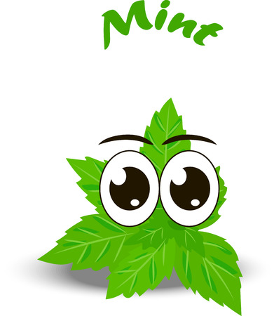 Very high quality original trendy vector illustration of a fresh mint leaves character, personage or face