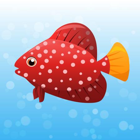 Very high quality original trendy vector illustration of Miniatus Grouper fish.Cephalopholis miniata Illustration