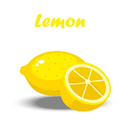 Very high quality original trendy vector illustration of a lemon