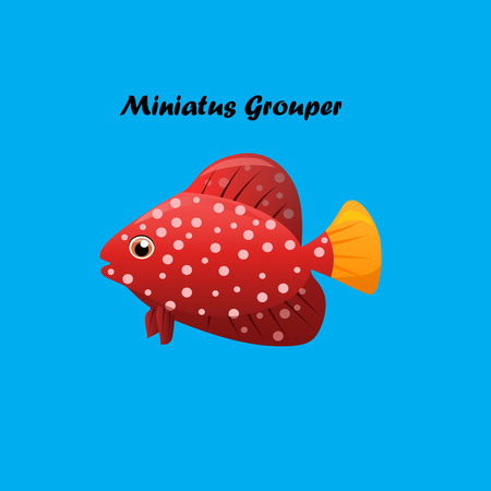 tang: Very high quality original trendy vector illustration of Miniatus Grouper fish.Cephalopholis miniata Illustration