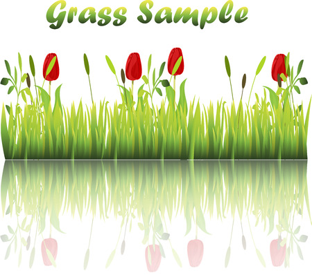 grass blades: Very high quality original trendy illustration of grass with flowers, chamomile, tulip