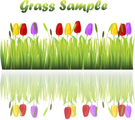 tulips in green grass: grass with flowers Illustration