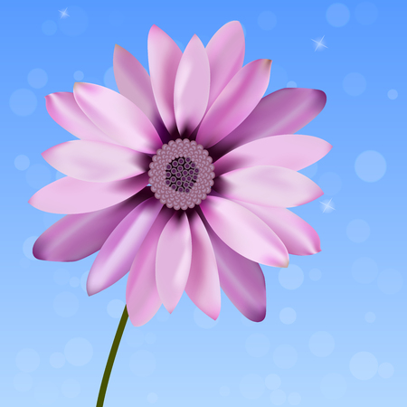 gently: very high quality original trendy vector illustration of beautiful gerbera