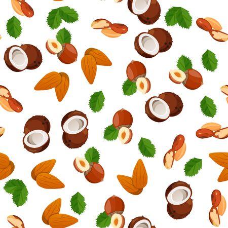brazil nut: illustration of nuts