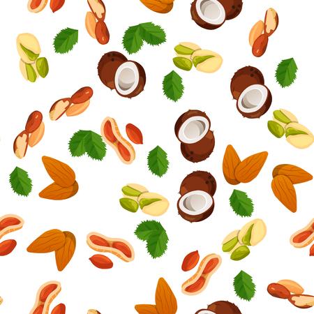nutshell: illustration of nuts