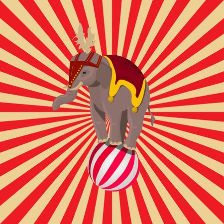 circus elephant balancing on ball Illustration
