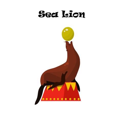 antarctica: Sea Lion or seal balancing a ball