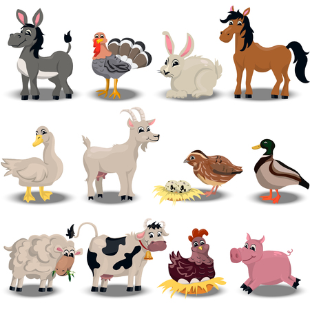 pigsty: Trendy vector set with cute pink pig, goose, sheep, cow. horse, duck, quail, donkey and others farm animals set Illustration