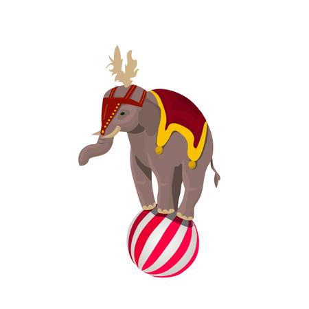 Circus elephant balancing on ball
