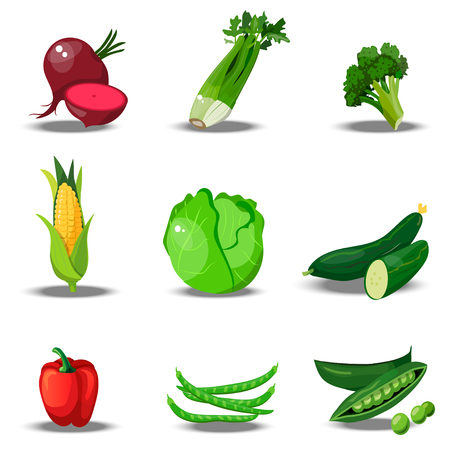 set with fresh healty vegetables