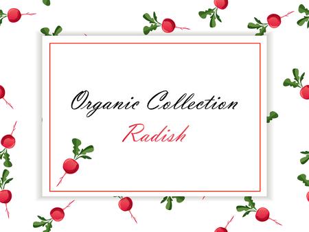 Thin line radish design, Vegetable food banner. Çizim