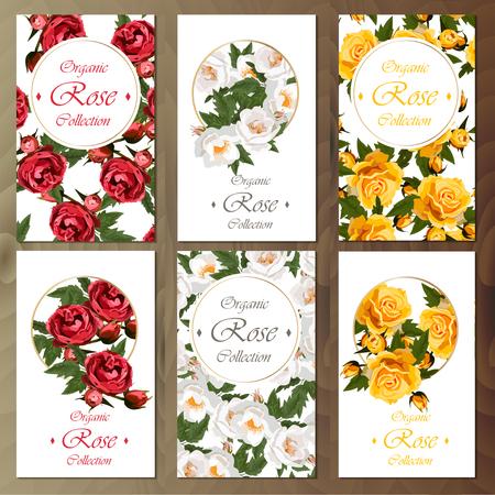 Viering briefkaart ontwerpset met rozen. Groot die ontwerp voor huwelijk of andere vieringsuitnodiging wordt geplaatst.