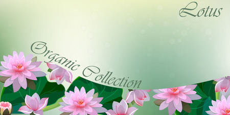 Vector illustration of lotus flower on light background. Stock Illustratie