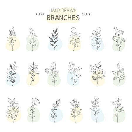 Rustic decorative branches and flowers collection. Hand drawn vintage vector design elements. Doodling. Vector illustration.