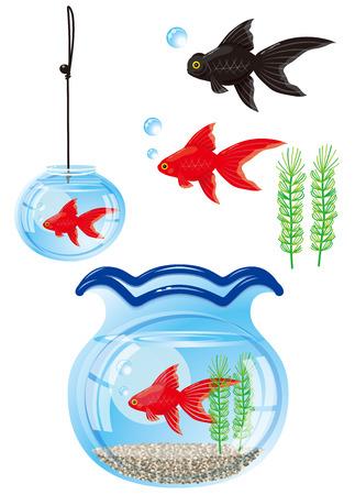 Fishbowl with goldfish  Japanese style photo