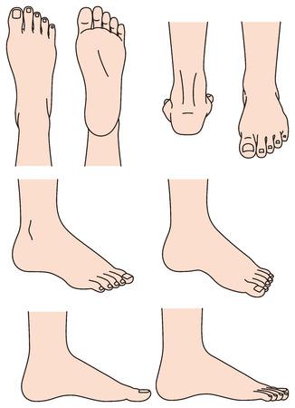 huella pie: La forma del pie Vectores