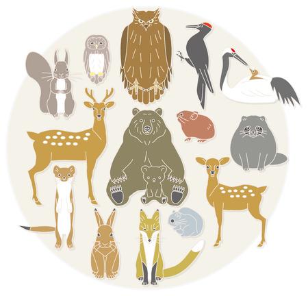 gronostaj: Lato zwierząt kraju północnej. Japonia