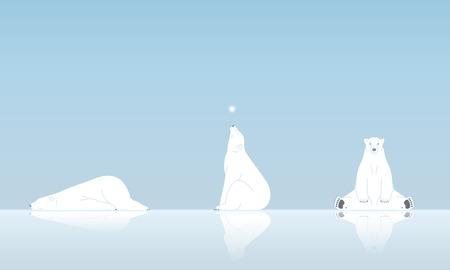 oso blanco: Oso polar y nieve Vectores