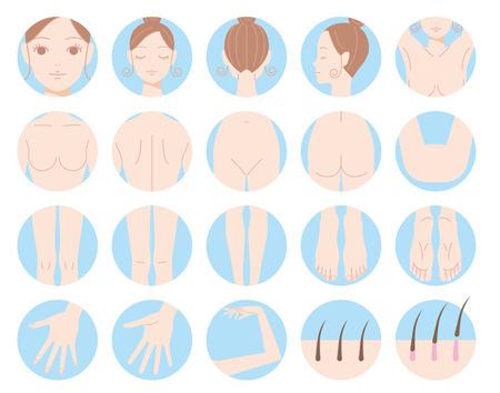 cuerpo entero: Mujer eliminación partes del cuerpo de la dieta del cabello. Vectores