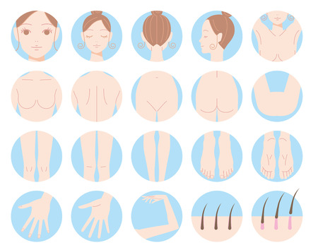Weibliche Körperteile Entfernung der Haare Ernährung. Illustration