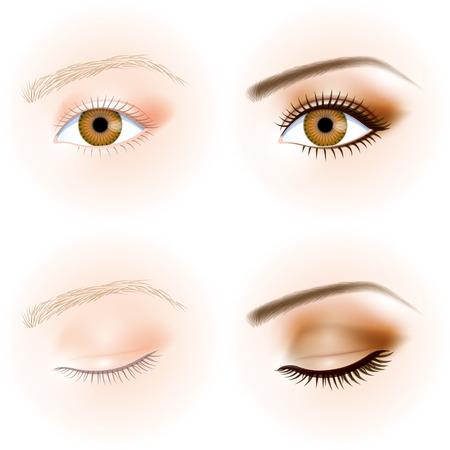eye, makeup  イラスト・ベクター素材