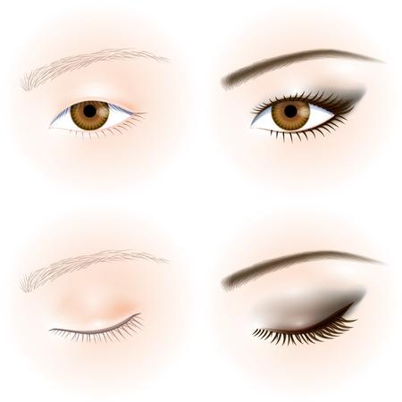 piel humana: Asi�ticos ojos. Maquillaje de ojos Vectores