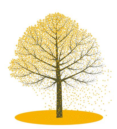 fallen: Autumn trees. Fallen leaves