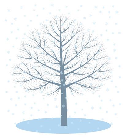 winter trees: Winter trees. Snow