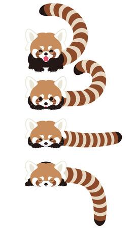 Red Panda Charakter