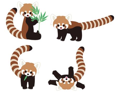 oso panda: Red Panda personaje Vectores