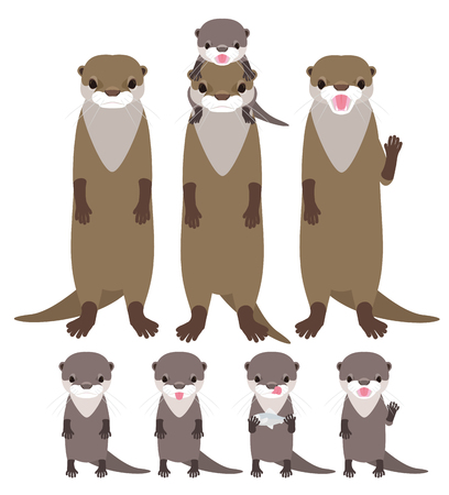 otter: Otter family.