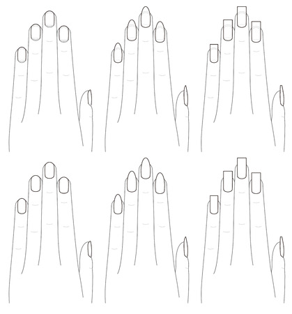 ring finger: The shape of the hands and nails.