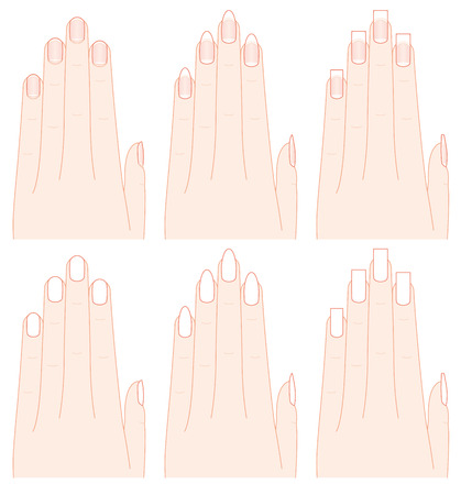 finger shape: The shape of the hands and nails.